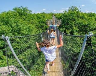 Vacances d'été : parcours aventures pour enfants